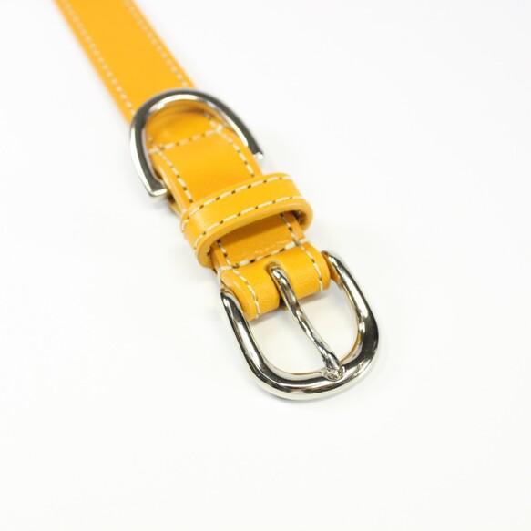 【送料無料】本革レザー首輪&リードセット〈中型犬〉 マスタードイエロー色 長さ変更可・カフェリードあり 高級ヌメ革使用 リード・首輪 Be-Beltry_3