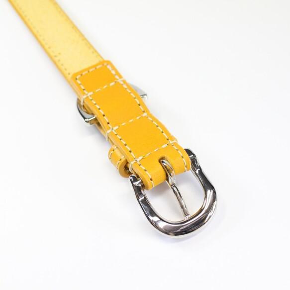 【送料無料】本革レザー首輪&リードセット〈中型犬〉 マスタードイエロー色 長さ変更可・カフェリードあり 高級ヌメ革使用 リード・首輪 Be-Beltry_4