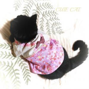 猫服🌸【限定完成品】サクラ春ワンピ ペットウエア 猫皮膚防護服 ペット服・アクセサリー CUTE CAT_7