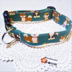 コロコロ柴犬の中型犬用お散歩首輪(2.5cm幅) リード・首輪 小春日和_1