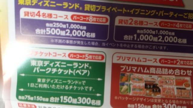東京ディズニー貸切パーティー4名さま分当たる1口_1