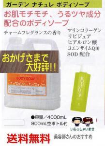 体臭対策ガーデン ナチュレ ボディソープ 4000ml_1
