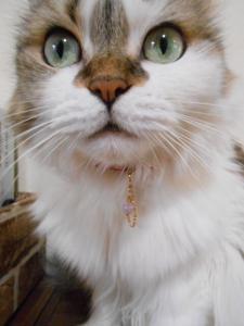 チャリティ☆猫さん用ペンダントトップ(送料込)クラック水晶(ラベンダーカラー)_1